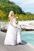 La giovane donna bellissima in un abito della sposa sul ponte sul mare e — Foto Stock
