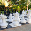 Figures for game in chess on the nature — Stock Photo
