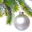 Stock Photo: White nacreous glass New Year's ball and snow-covered branches