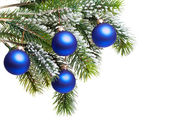Dark blue New Year's balls on a snow-covered branch — Stock Photo