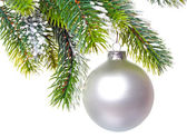 White nacreous glass New Year's ball and snow-covered branches — Stockfoto