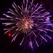 Bright fireworks in the night sky - Stock Photo