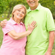 Happy senior couple outdoors — Stock Photo #6786046