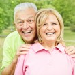 Happy elderly couple — Stock Photo #6786722