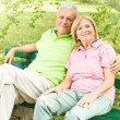 Happy senior couple relaxed — Stock Photo #6844944