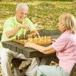 Happy senior couple playing chess on a park bench — Stock Photo #6845152