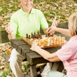 Happy senior couple playing chess on a park bench — Stock Photo