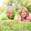Happy old relaxed — Stock Photo