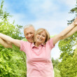 Happy elderly couple outdoors — Stock Photo