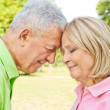 Romantic senior couple — Stock Photo #7008374