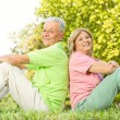 Happy senior couple sitting on grass — Stock Photo #7008539
