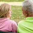 Old couple outdoors — Stock Photo #7008738