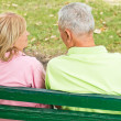 Old couple outdoors — Stock Photo #7008792