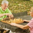 Happy senior couple playing chess on a park bench — Stock Photo #7008868