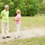 Portrait of happy senior couple outdoors — Stock Photo #7553191