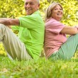 Happy senior couple sitting on grass — Stock Photo