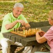 Royalty-Free Stock Photo: Happy senior couple playing chess on a park bench