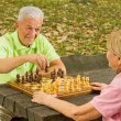 Happy senior couple playing chess on a park bench — Stock Photo #7553317