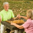 Happy senior couple playing chess on a park bench — Stock Photo #7553356