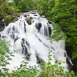 Betws-y-Coed Waterfalls in Snowdonia, North Wales — Stock Photo #6915165