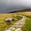 Stone path in mountains of snowdonia, Wales — Stock Photo #6915181