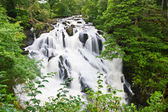 Betws-y-Coed Waterfalls in Snowdonia, North Wales — Stock Photo