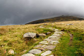 Stone path in the mountains of snowdonia, Wales — Stock Photo