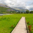 Wooden path in Snowdonia, Wales, UK — Stock Photo #7118741