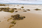 Tranquil scene at Criccieth beach in low tide — Stock Photo