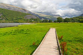 Wooden path in Snowdonia, Wales, UK — Stock Photo