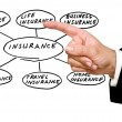 Stock Photo: Presentation of insurance structure