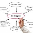 Stock Photo: Presentation of structure of taxation