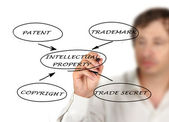 Presentation of protection of intellectual property — Stock Photo