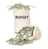 Bag with budget — Stock Photo