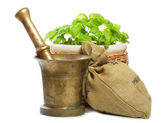 Old mortar with spices and fresh green basil — Stock Photo