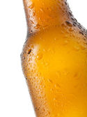 Bottle of beer with water drops — Stock Photo