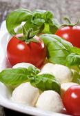 Mozzarella, green basil and tomatoes — Stock Photo