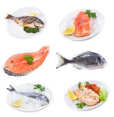 Set with different raw and prepared fish — Stock Photo