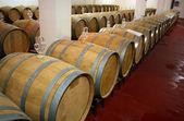 Winery barrels — Stock Photo