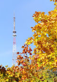 Autumn landscape with the television tower — Stock Photo