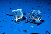 Ice cubes falling on blue surface — Stock Photo