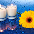 Wet, yellow flower by candle light — Stock Photo