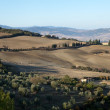 The hills around Pienza and Monticchiello — Foto Stock