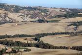 The hills around Pienza and Monticchiello — Stock Photo