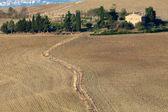 Le paysage de la Toscane. Italie — Photo