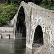 Ponte della Maddalena across the Serchio. Tuscany. Bridge of the Devil — 图库照片