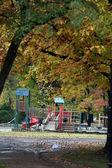 Beautiful autumn trees in the park — Stock Photo