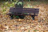 Prázdné lavičky v parku na podzim — Stock fotografie