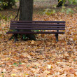 Empty bench in the park in autumn — Stock Photo