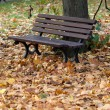 Empty bench in the park in autumn — Stockfoto